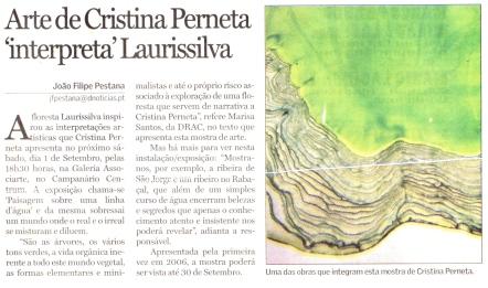 Arte de Cristina Perneta interpreta Laurissilva | Diário de Notícias da Madeira, 28 Agosto 2007