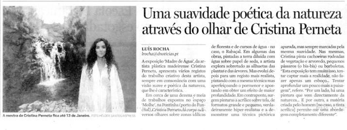 Uma suavidade poética da natureza através do olhar de Cristina Perneta | Diário de Notícias da Madeira, 19 Dezembro 2009