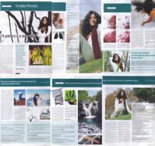 A relação da natureza com a Pintora | Revista Saber, Fevereiro 2007